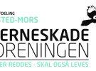 HJERNESKADETRÆTHED v/ Kenneth Kinastowski